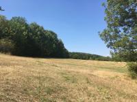 Prodej pozemku 8300 m², Žim