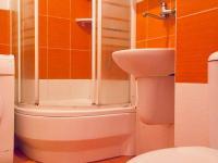 Prodej bytu 3+1 v družstevním vlastnictví 41 m², Hostomice