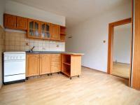 Pronájem bytu 1+1 v osobním vlastnictví 41 m², Bílina