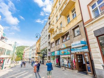 Prodej bytu 1+kk v osobním vlastnictví 45 m², Karlovy Vary