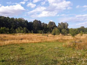 Prodej pozemku 34005 m², Krupka