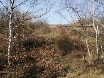 pohled ze silnice - Prodej pozemku 1472 m², Hrob