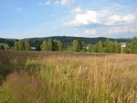 Prodej pozemku 28240 m², Bublava