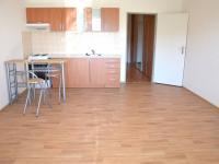 Pronájem bytu 1+kk v osobním vlastnictví 40 m², Holubice
