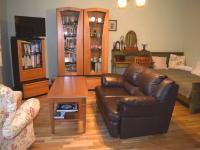 Obývací pokoj (Prodej bytu 1+1 v osobním vlastnictví 49 m², Roztoky)