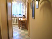 Chodba (Prodej bytu 1+1 v osobním vlastnictví 49 m², Roztoky)