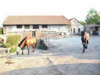Prodej domu v osobním vlastnictví 122 m², Holubice