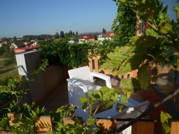 výhled z balkonu pokoje - Prodej penzionu 927 m², Dlouhá Lhota