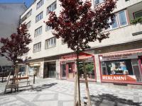 Prodej bytu 2+kk v osobním vlastnictví 30 m², Praha 1 - Nové Město