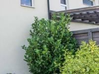 oddělení dvojdomu (Prodej domu v osobním vlastnictví 80 m², Nehvizdy)