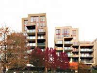 Pronájem bytu 2+kk v osobním vlastnictví 63 m², Praha 7 - Holešovice