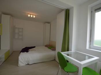 Prodej bytu 1+kk v osobním vlastnictví 32 m², Šestajovice