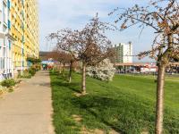 úprava zeleně před domem - Prodej bytu 3+1 v družstevním vlastnictví 69 m², Praha 4 - Chodov