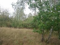 Prodej pozemku 1490 m², Krhanice