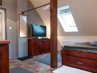 Pronájem bytu 1+kk v osobním vlastnictví 25 m², Praha 10 - Vinohrady
