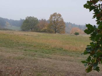 Prodej pozemku 11588 m², Hlupín