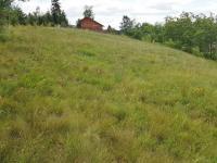 Prodej pozemku 6649 m², Krty-Hradec