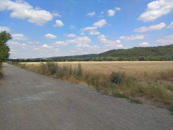 Pozemek zemědělský na prodej, Zbraslav