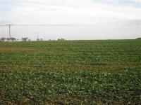 Prodej pozemku 27000 m², Dolní Přím