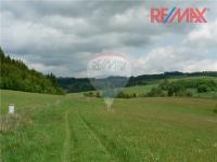 Prodej pozemku 20000 m², Borušov