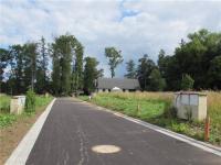 Prodej pozemku 1210 m², Borová