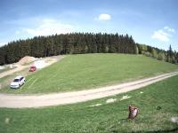 Prodej pozemku 9816 m², Čenkovice