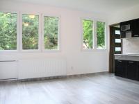 Pronájem bytu 3+kk v osobním vlastnictví 56 m², Pardubice