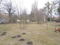 Prodej pozemku 700 m², Heřmanův Městec