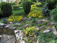 Jarní foto zahrady (Prodej domu v osobním vlastnictví 230 m², Heřmanův Městec)