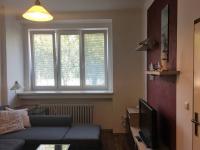 Pronájem bytu 1+1 v osobním vlastnictví 35 m², Pardubice