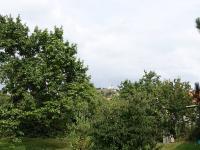 Prodej penzionu 796 m², Mikulov