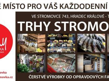 Pronájem komerčního objektu 34 m², Hradec Králové