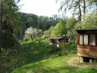 Prodej chaty / chalupy 60 m², Stříbrná Skalice