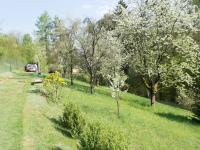 Prodej pozemku 3165 m², Stříbrná Skalice