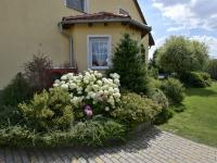 Zahrada (Prodej domu v osobním vlastnictví 160 m², Postřižín)