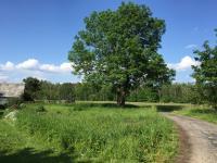 Prodej pozemku 622 m², Pištín