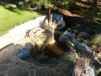 jezírko na zahradě (Prodej domu v osobním vlastnictví 160 m², Frymburk)