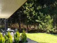 zahrada (Prodej domu v osobním vlastnictví 160 m², Frymburk)