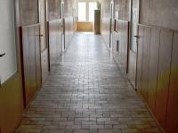 Pronájem kancelářských prostor 28 m², Homole
