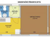 Orientační půdorys (Prodej bytu 2+1 v osobním vlastnictví 32 m², Borovany)