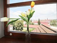Prodej bytu 2+kk v osobním vlastnictví 49 m², České Budějovice
