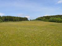Prodej pozemku 49382 m², Čkyně