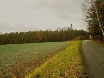 pohled od komunikace k obci Heřmaň - Prodej pozemku 3365 m², Heřmaň
