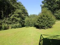 pozemek (Prodej domu v osobním vlastnictví 220 m², Mirkovice)