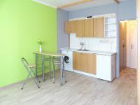 Pronájem bytu 1+kk v osobním vlastnictví 21 m², České Budějovice