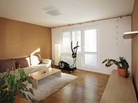 obývací pokoj (Pronájem bytu 3+1 v družstevním vlastnictví 67 m², České Budějovice)