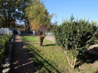 zahrada - Prodej domu v osobním vlastnictví 240 m², Hluboká nad Vltavou