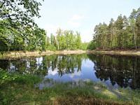 Rašelinový rybník v blízkosti pozemku (Prodej pozemku 29096 m², Rapšach)