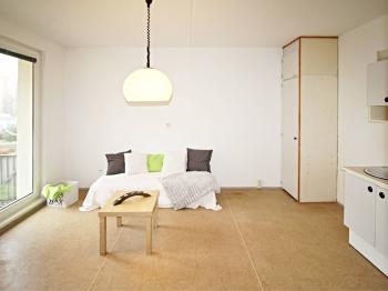 pokoj s kuchyňským koutem - Prodej bytu 2+kk v družstevním vlastnictví 42 m², České Budějovice