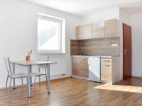 Pronájem bytu 1+kk v osobním vlastnictví 28 m², České Budějovice